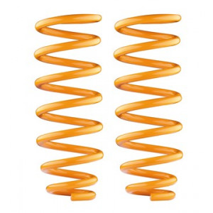 NS 2006-2009 Rear Performance LWB Coil Springs